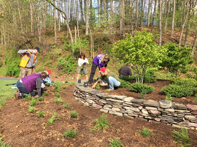 Thirty-five people participated in the April 23 Clifton Earth Day event.