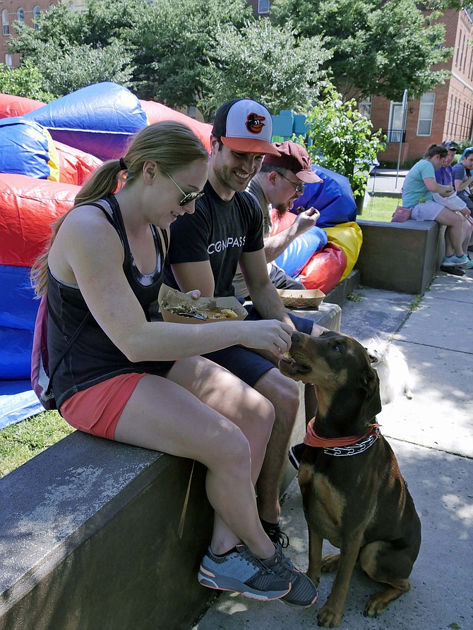 Demetri, a rescue dog, shows off his manners as Quentin Roos and Liz Tershel hand feed him bites of a barbecue brisket sandwich at Bark in the Park on June 7. This event was held at James Hunter Dog Park in Arlington and sponsored by Clarendon Animal Care and Clarendon Alliance.