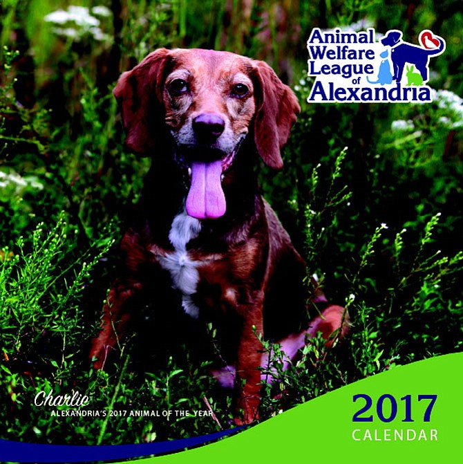 The Animal Welfare League of Alexandria's 2017 calendar, featuring Charlie. Voting is on now for this year's online Pet Photo Contest, and all animals entered in the contest will be pictured in the new calendar.