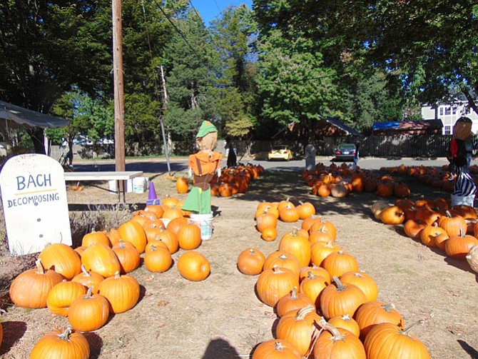 Saint Luke's Episcopal Church kicked off its 12th year Pumpkin Patch fundraising effort last weekend.