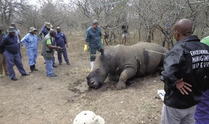 Crime Scene Training at actual poaching incident.