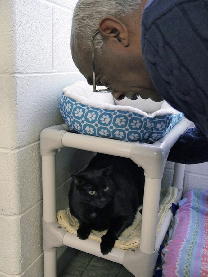 Lynwood Campbell coaxes Max out of his corner at the Alexandria Animal Shelter.
