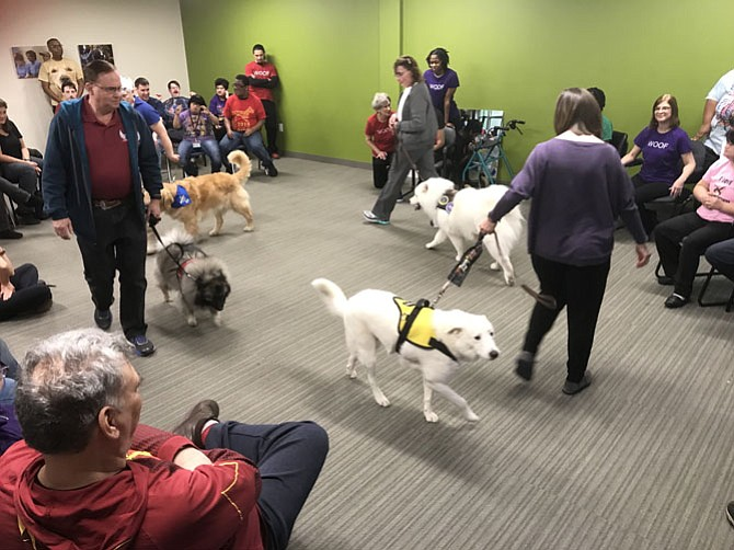 "Therapy Dogs performers in ""All About Dogs."""