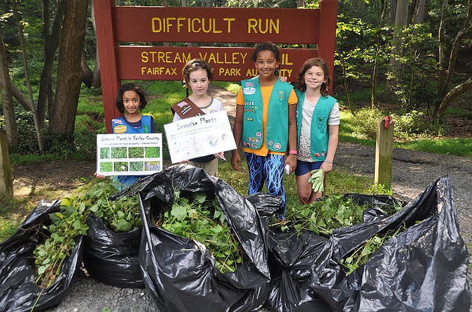 The scouts and their families pulled more than 20 large garbage bags of the invasive plant garlic mustard.