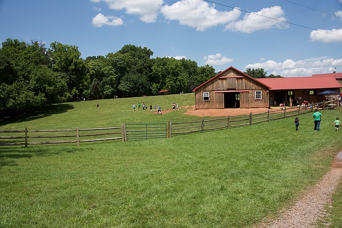 Poplar Spring Animal Sanctuary welcomed visitors last weekend as part of the annual Montgomery County Farm Tour and Harvest Sale. One of the barns held goats and cows.