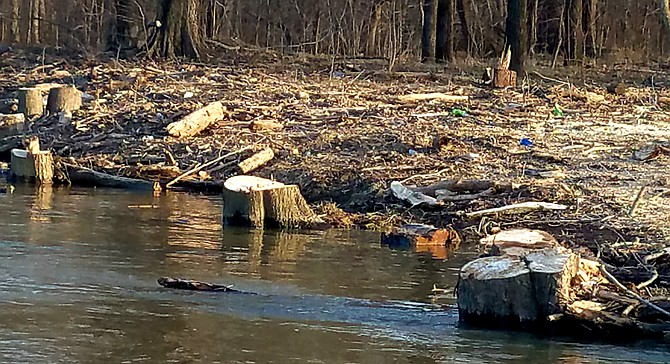 Loudoun County has issued a Notice of Violation to the Trump National Golf Course following the improper removal of trees from a floodplain without a permit.