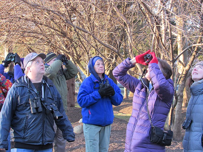Birders help provide critical information through sightings, which provide data on abundances, range boundaries, habitats and trends.