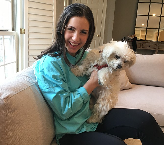 Bullis student Sidney Helfand, with her Maltese Luna, started an online petition encouraging Congress to pass the Preventing Animal Cruelty and Torture Act.