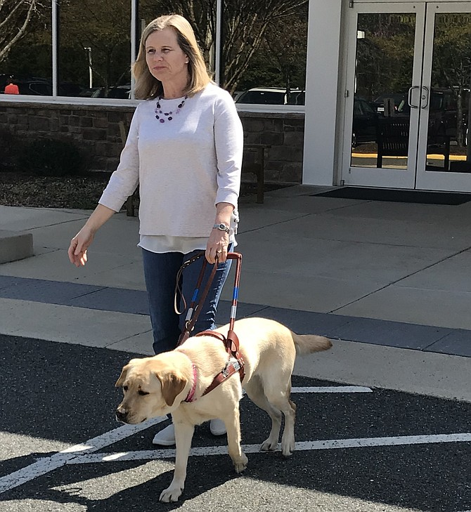 Guide dog Betty safely leads Carol Edwards of Herndon across the street.