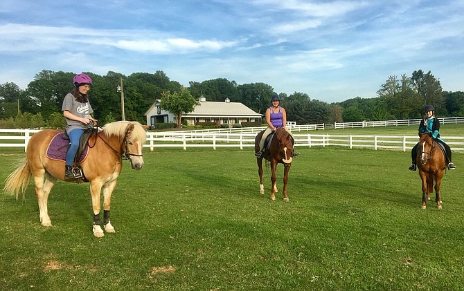 Equine Therapy can be used to treat those with PTSD, says Olivia Taylor of the Northern Virginia Therapeutic Riding Program.