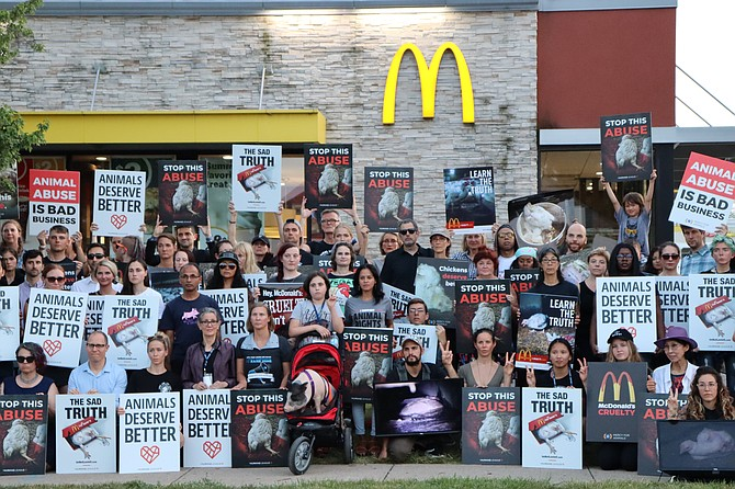 Animal rights activists gather together for a photo at the conclusion of the protest organized by The Humane League, which took place in front of the McDonald's in Bradlee Shopping Center.