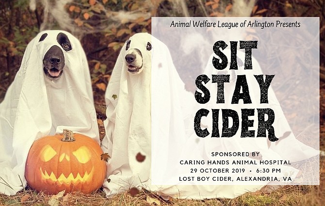 Dress up your pup and enjoy a taste of craft cider at the Animal Welfare League of Arlington's fundraiser at Alexandria's Lost Boy Cider.
