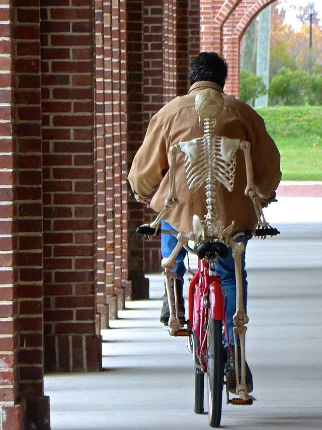 """Skeleton on Bicycle"" created by Tex Forrest with bicyclist Dale Marhanka."