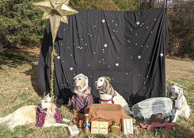 The Church of the Good Shepherd (United Methodist) on Hunter Mill Road in Vienna held its  4th Annual Puppy Nativity on Saturday, Dec. 7.