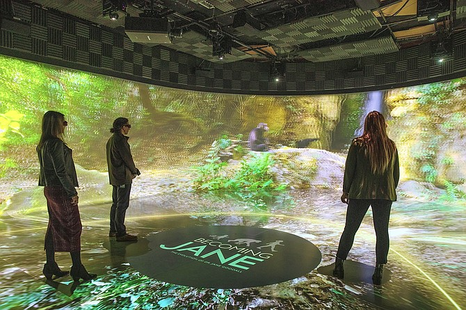 An immersive virtual-reality 3D theatre.