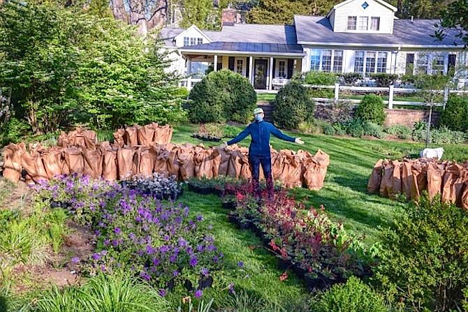 Landscape designer Lynley Ogilvie with plants for fundraiser for SHARE.