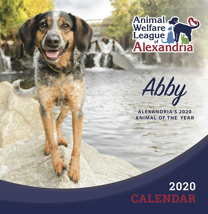 A therapy dog named Abby graced the cover of the 2020 Animal Welfare League of Alexandria calendar. Abby garnered the most votes in last year's photo contest; this year's competition launches June 1.
