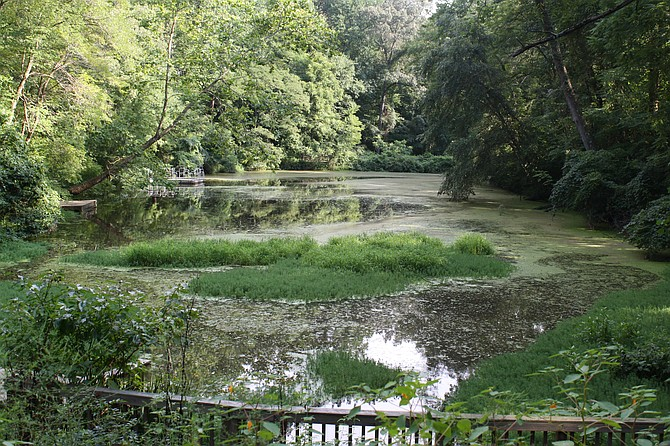 Hidden Pond Nature Center: Acres of undisturbed woodland, quiet trails, splashing streams and a tranquil pond.