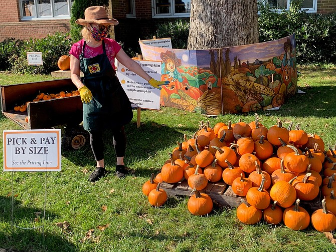 A volunteer points to a display of pumpkins Oct. 4 on opening day of the 27th annual Immanuel Church-on-the-Hill pumpkin patch charity fundraiser.