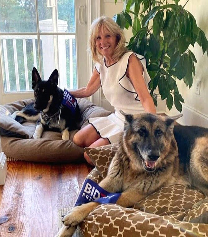 "Biden dogs Major (left) and Champ, set to become unofficial ""First Dogs"", here with Dr. Jill Biden in this photo published around the world."
