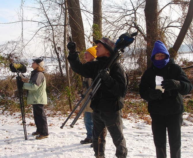Members of the Friends of Dyke Marsh count birds for the Christmas Bird Count in the marsh and the Potomac River: Paula Sullivan, Ned Stone, Ed Eder and Dorothy McManus.