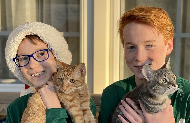 "Tytus, 10, Orange Hunt Elementary, and brother Maksyn Jacewitz, 13, Irving Middle School, Springfield, with rescue kittens, Marigold and Lily. Along with their younger brother Justyn, the boys fostered 11 cats during the Covid quarantine. Asked why is adopting/fostering important to them,  Tytus told us, ""Personally, if you save animals from shelters that's good. You save lives. They die if you don't adopt them."""