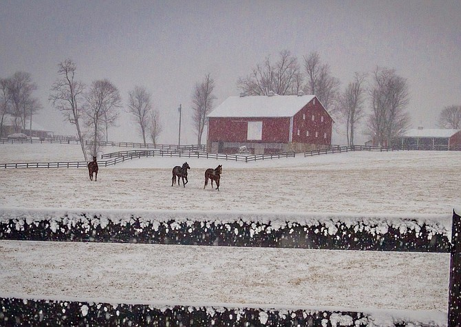 An initiative to permit the solar industry to plant industrial solar in the Agricultural Reserve will advance with restrictions. Here, part of the Reserve in Poolesville in the snow.