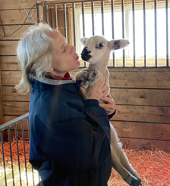 For Yvonne Johnson, former Manager of Frying Pan Farm Park, retirement means she has all the time in the world to volunteer at the park and play with the animals.