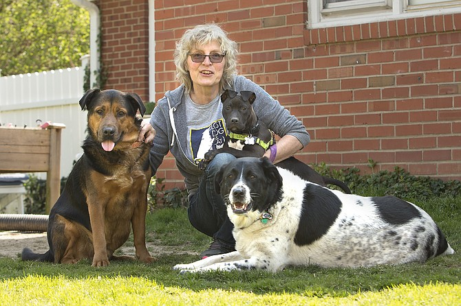 Johanna Pichlkostner Isani with adopted canines Lexie and Paxton and puppy foster Bri.