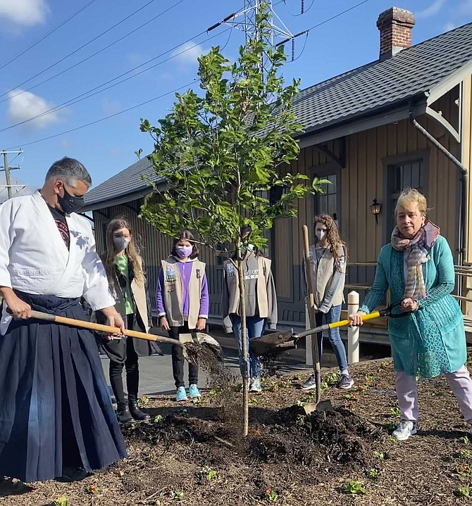 In celebration of Arbor Day 2021, Mayor Sheila Olem of the Town of Herndon, along with Chief Instructor Tony Breda of Heaven and Earth Aikido, plant the new Yoshino Cherry tree in the Town Square. Girl Scouts from Saint Joseph School Girl Scout Council of the Nation Capital Troop 2421, (from left)  Josie, 12, of Herndon, Mairead M., 11, of Herndon, Mariana, 12, of Herndon and, Ainsley, 12, of Vienna look on.