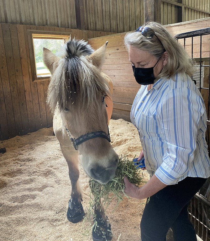 Delfinia, one of Lift Me Up's most loved horses, is back home after a lengthy and costly stay at the Marion duPont Scott Equine Medical Center. Georgia Bay, Executive Director and Advanced Instructor at Lift Me Up, gives her a bit of hay.