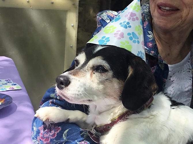 Wendy herself, celebrating her 21st birthday.