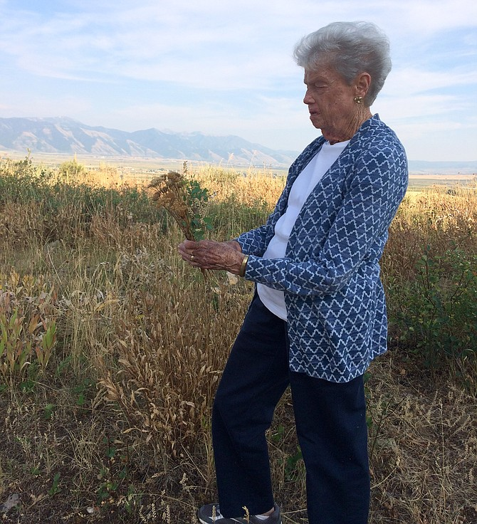 Ann Shanley, making wildflower bouquets in a Wyoming field at 90.