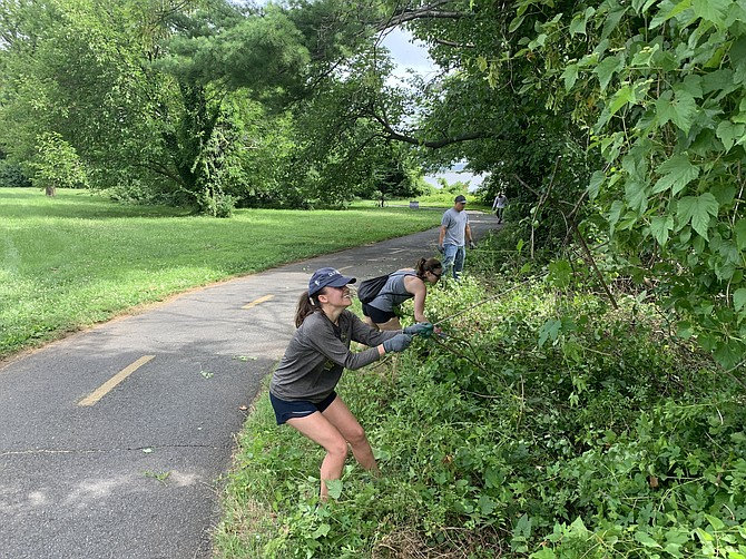 Weeds and blind corners are being cleaned up by the Friends of the Mount Vernon Trail.