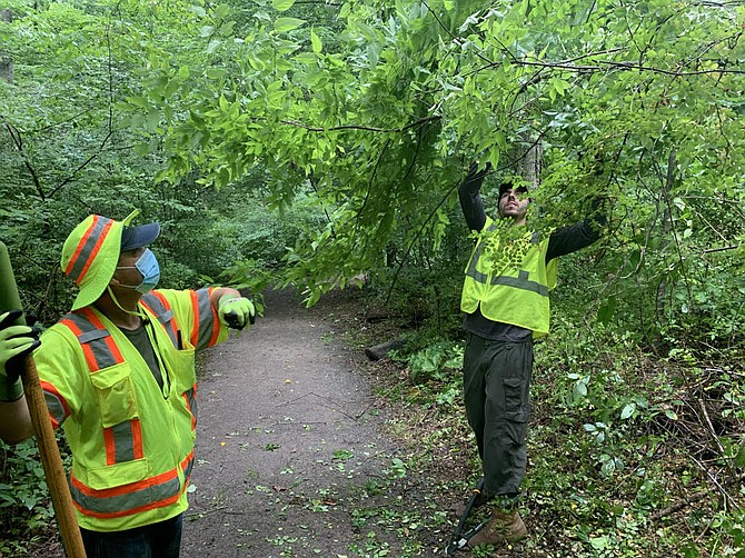 Trash and invasive plants are targets along the streams in Fairfax County.