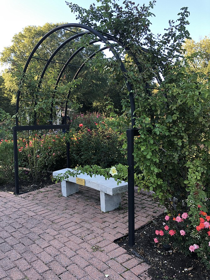 The classic charm of the rose garden is perfect for meeting up with friends or a stroll.